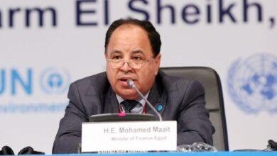 صورة وزير المالية:  مصر ستواصل النمو القوي خلال العامين المقبلين