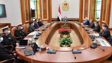 صورة الرئيس عبد الفتاح السيسي استقبل اليوم السيد بيتر لورسن مالك و رئيس مجلس إدارة شركة لورسن الألمانية العالمية