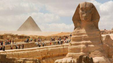 """صورة """"الرئيس التنفيذي للهيئة المصرية العامة للتنشيط السياحي"""" تتعاون مع المدونين للترويج للمقاصد السياحية"""