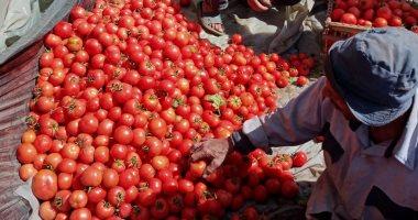 صورة أسعار الخضروات اليوم في سوق العبور للجملة.. الطماطم بين 1.5-2.5 جنيها للكيلو