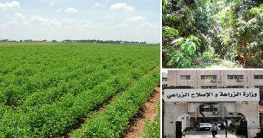 صورة وزير الزراعة يبحث فى جوبا التعاون الزراعى بين مصر وجنوب السودان